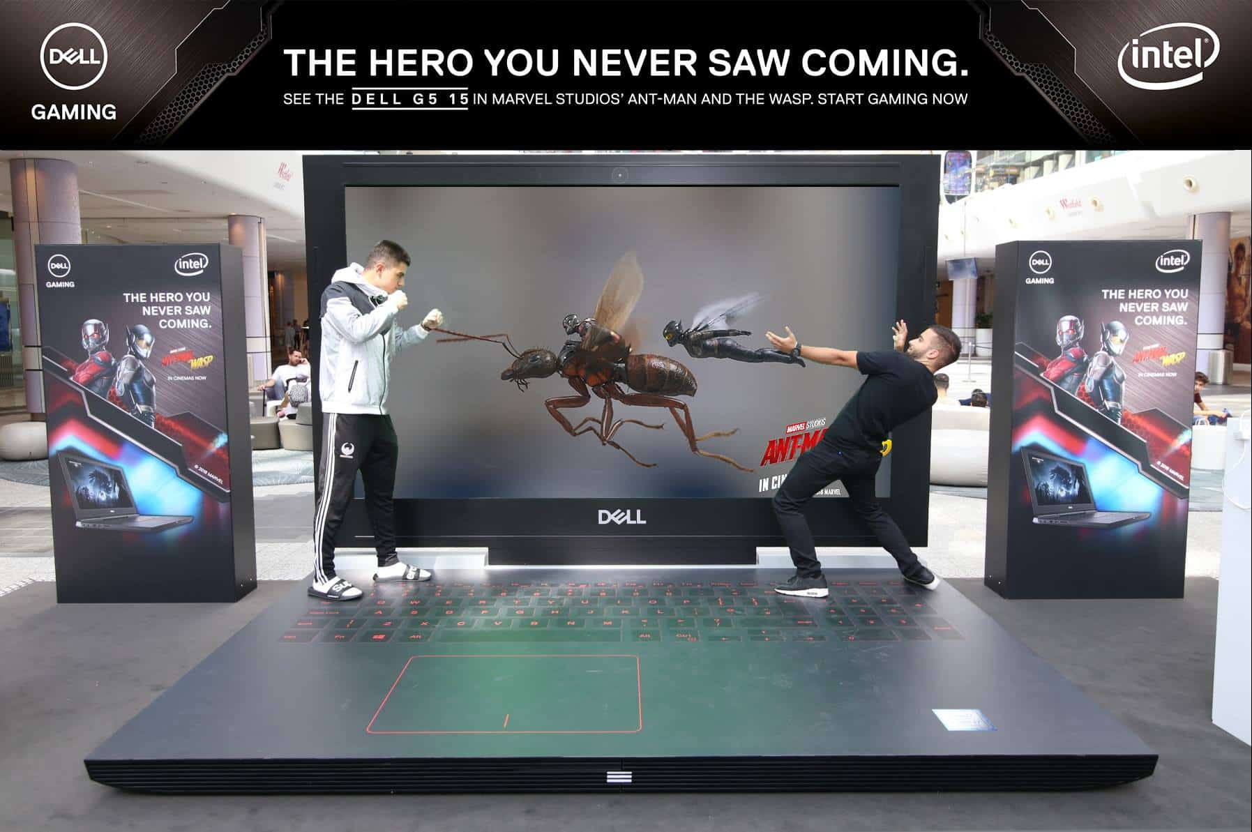 dell wasp